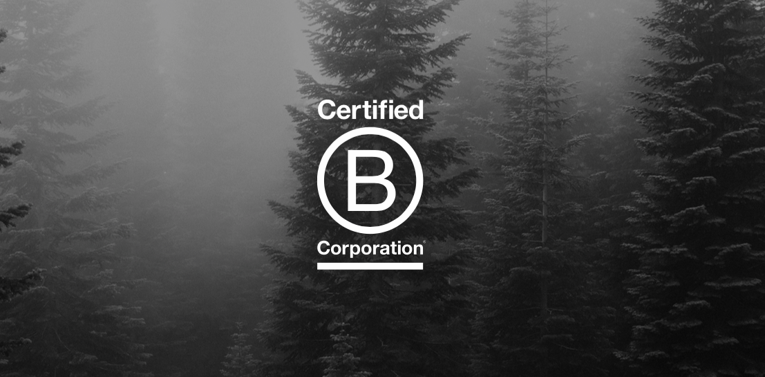 Becoming a Certified B Corp. Again.